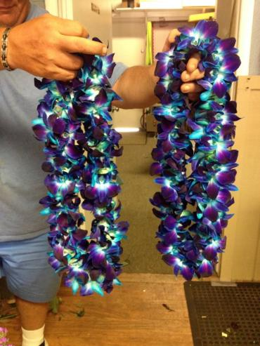 BEACHY TROPICAL VIBRANT BLUE BOM ORCHID LEIS